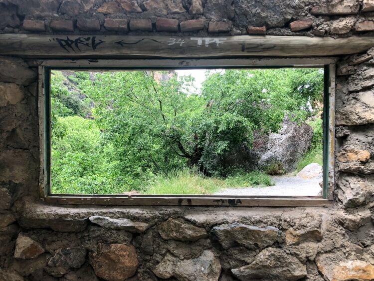 window overlooking plants in Sierra Nevada
