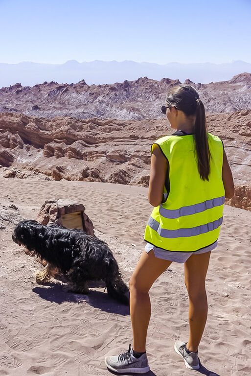 kristen in high vis jacket with dog in valley of the moon