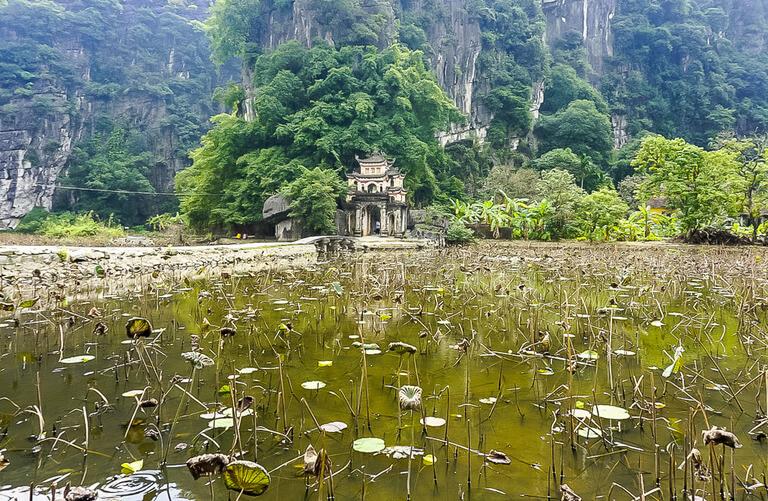 lotus flowers on lake entrance to Bich don't Ninh Binh itinerary