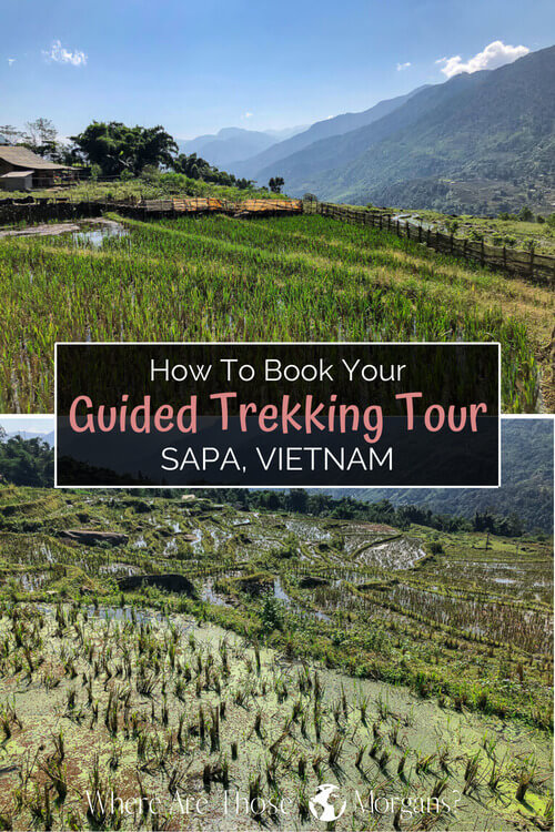 How To Book Your Guided Trekking Tour in Sapa, Vietnam