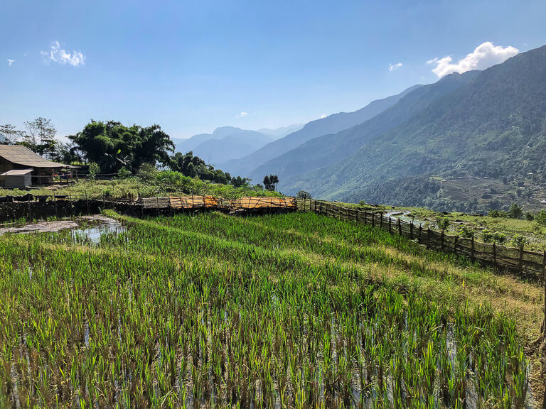 sun shining on green valley trekking sapa vietnam