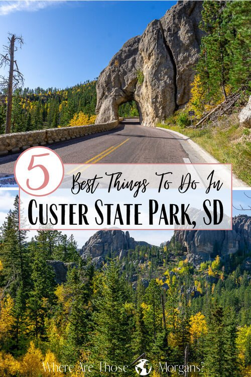 5 Best things to do in Custer state park sd