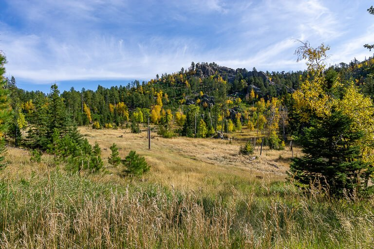 Stunning scenery near Custer State Park Black Hills National Forest meadows and hills green and yellow
