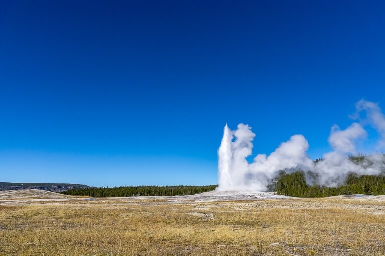 Old Faithful Just beginning to erupt into a clear blue sky at Yellowstone