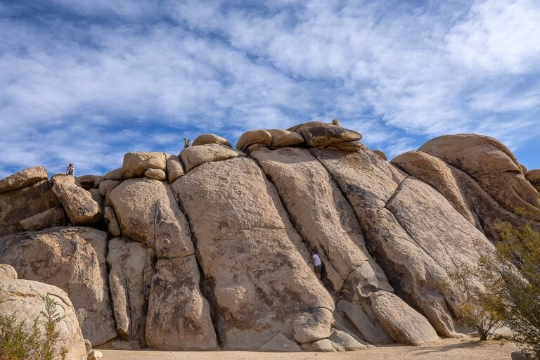 People rock climbing a huge cracked boulder at Joshua Tree National Park California