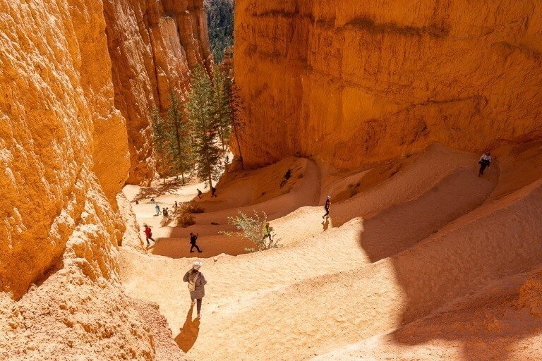 Switchback trails in Bryce Canyon Amphitheater to Wall Street and Thors hammer