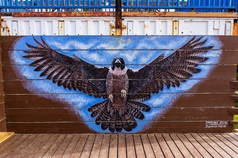 Torrey Pines glider port bird mural
