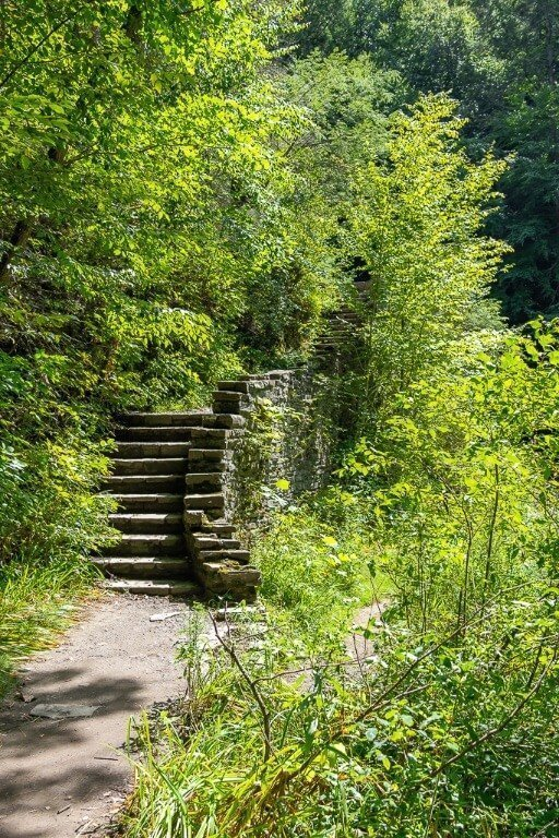 Stone staircase surrounded by stunning green trees in the finger lakes