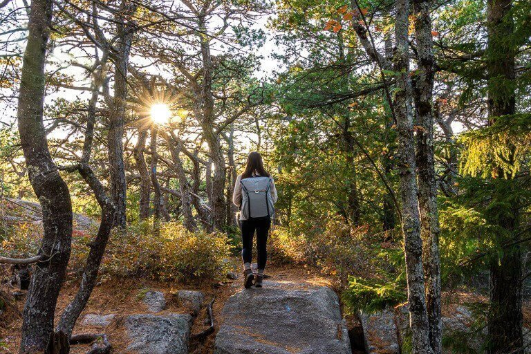 Kristen walking through stunning forest in Acadia national park Maine with peak design everyday backpack in ash and sunstar